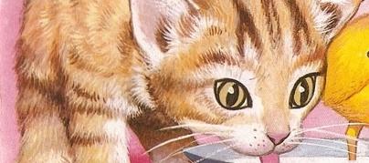 Los gatos, 1988: orígenes de la 'CatXploitation'