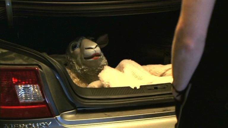 """En lo personal no me van las ovejas, pero que ésta tenía """"junk in the trunk"""", tenía."""